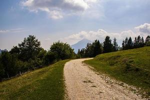 Alpine path among the green pastures of the Posina valley photo