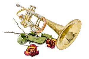 Old rusted trumpet with dried roses isolated on white photo