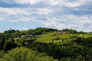 verdes campos agrícolas en las colinas foto
