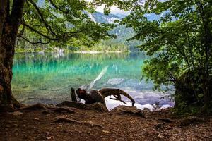 The Alpine Lake of Tovel in the Val Di Non, Trento, Italy photo