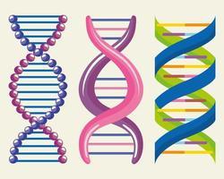 dna three molecules vector
