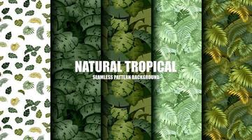 Tropical palm leaves pattern background vector