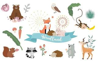 Cute woodland object collection with bear vector