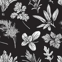 Italian and Provencal herbs seamless pattern. Mediterranean seasonings and herbs pattern. Hand-drawn vector illustration