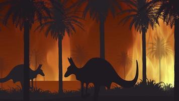 Fires in Australia Video in Motion Illustration