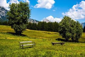Green pastures around Cortina D'Ampezzo in Belluno, Italy photo