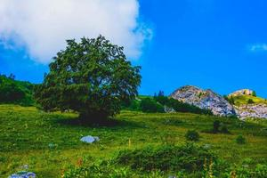 Meadows and mountain peaks at Monte Altissimo di Nago in Trento, Italy photo