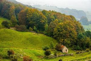Autumn in the Lessinia Park photo