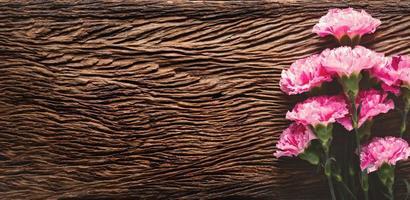 flores de clavel con minimalista. foto