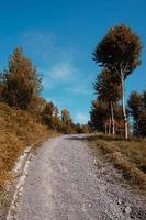 camino en la montaña en temporada de otoño foto