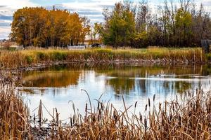 Fall foliage is a highlight on a drive through the county Red Deer County Alberta Canada photo
