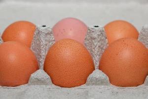 Homemade brown eggs in an eco friendly carton photo