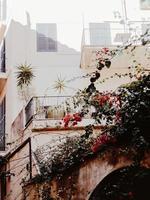 Mediterranean summer streets photo