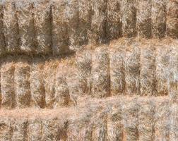 Fondo de textura de alpacas de paja en un campo de cultivo foto