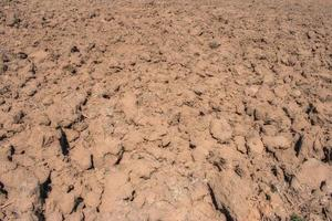 background texture of tilled soil in a crop field photo