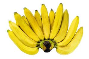 Closeup a comb of ripe yellow bananas isolated on white background photo