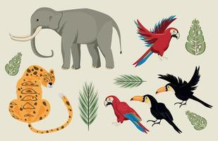 wild animals and leafs group scene vector
