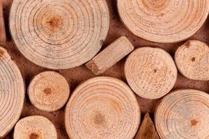 Close-up de troncos de madera cortados en secciones foto