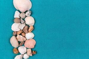 Conchas de mar dispuestas sobre un moderno fondo azul agua. foto