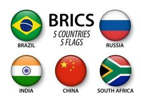 asociación brics de 5 países brasil rusia india china sudáfrica vector