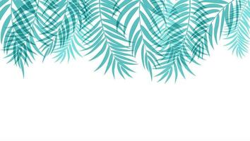 Beautiful Palm Tree Leaves Silhouette Background vector
