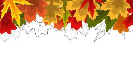 Fondo de borde transparente de hojas de otoño brillante vector