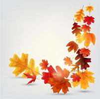 fondo de banner de hojas de otoño brillante vector