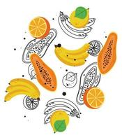 fresh local fruits with bananas and papayas in white background vector