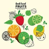 fresh local fruits lettering and group fruits vector