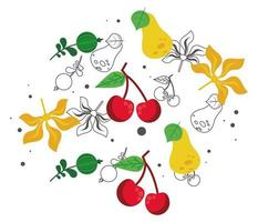 fresh local fruits with pears and cherries in white background vector