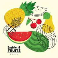 fresh local fruits lettering and set fruits group vector