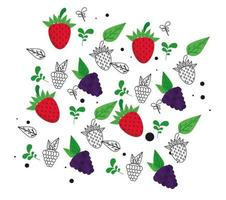 fresh local fruits with grapes and strawberries in white background vector