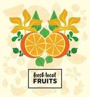fresh local fruits lettering with oranges and leafs vector
