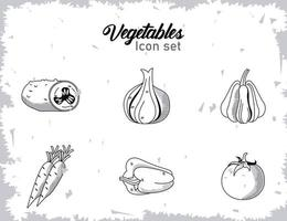 bundle of six vegetables with lettering icons vector