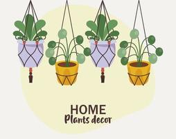 bundle of four home plants in ceramic pots decor hanging and lettering vector