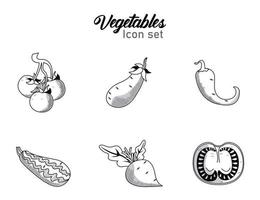 bundle of six vegetables with lettering set icons vector