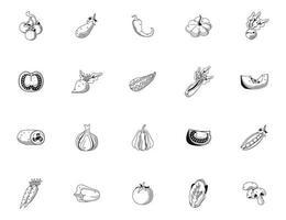 bundle of twenty vegetables set icons vector