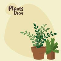 bundle of two home plants in ceramic pots decor and lettering vector