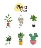 bundle of six home plants in ceramic pots decor and lettering vector