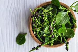 Basella alba hojas vegetales para la salud foto
