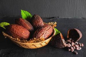 Dried cocoa and cocoa beans photo