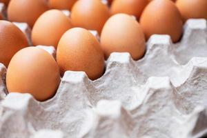 Un primer plano de huevos de gallina crudos en paneles de huevos foto
