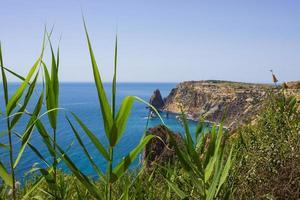 Seascape near Cape Fiolent in Sevastopol Crimea photo
