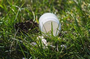 White pills in the grass with pine cones photo