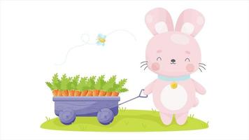 Easter bunny animation video