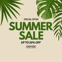 Summer sale poster Natural Background with Tropical Palm and Monstera Leaves exotic flower vector