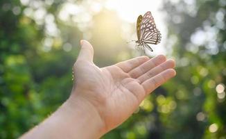 liberando a la mariposa del momento foto