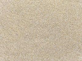 Semillas de amaranto fondo de textura de alimentos foto de stock