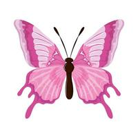 watercolor pink butterfly vector