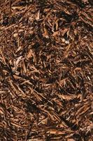 Fondo de textura de heno de paja seca foto